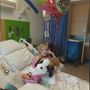 6-year-old Dewar girl recovering in hospital from rattlesnake bite
