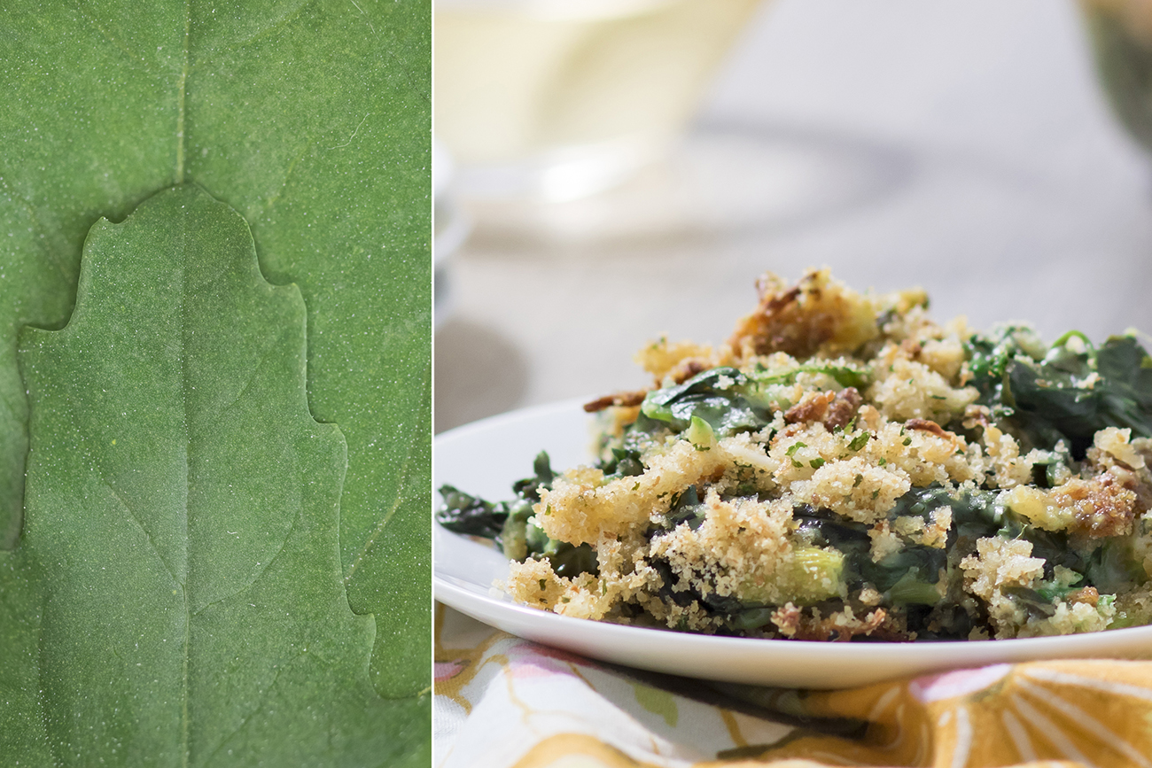 <p>An uncommon ingredient, lambs quarters, are commonly considered weeds, but this Creamy Lambs Quarters recipe will change your mind. / Image: Allison McAdams // Published: 5.15.20  </p>