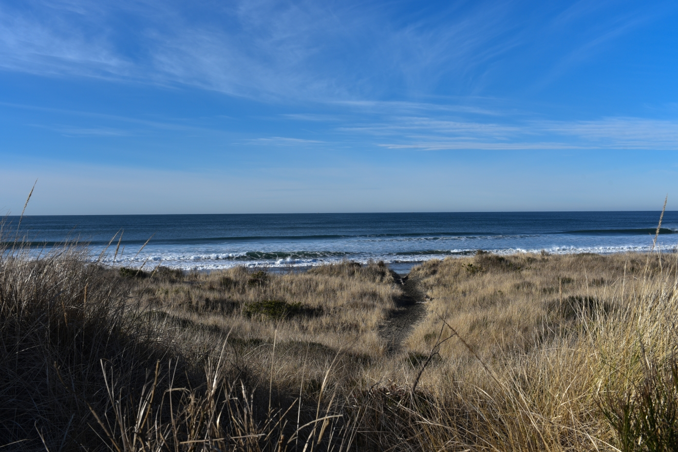 The recreational opportunities in Westport are endless from SUP to surfing, fishing, cycling, hiking, mountain biking and beach combing. (Image: Rebecca Mongrain/Seattle Refined)