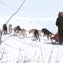 'Doty Dog Days' highlights winter sports like dog sledding