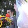 NEWS9 Special Assignment: Your Big Day