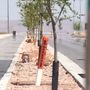 Horizon City unveils new roadway ahead of schedule