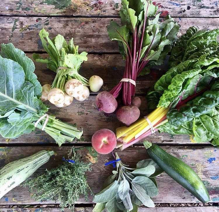 Make sure to check out Bloomingdale's selection of independent markets and weekend farmers markets. (Image via @commongoodcityfarm)