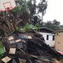 Tree falls on elderly couple's home in Stuart