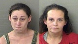 Deputies: Squatters caught with multiple meth labs, needles and drugs