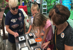 A Family Learning About Butterflies at Krohn Conservatory.jpg