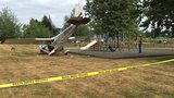 3 injured as small plane crashes into park