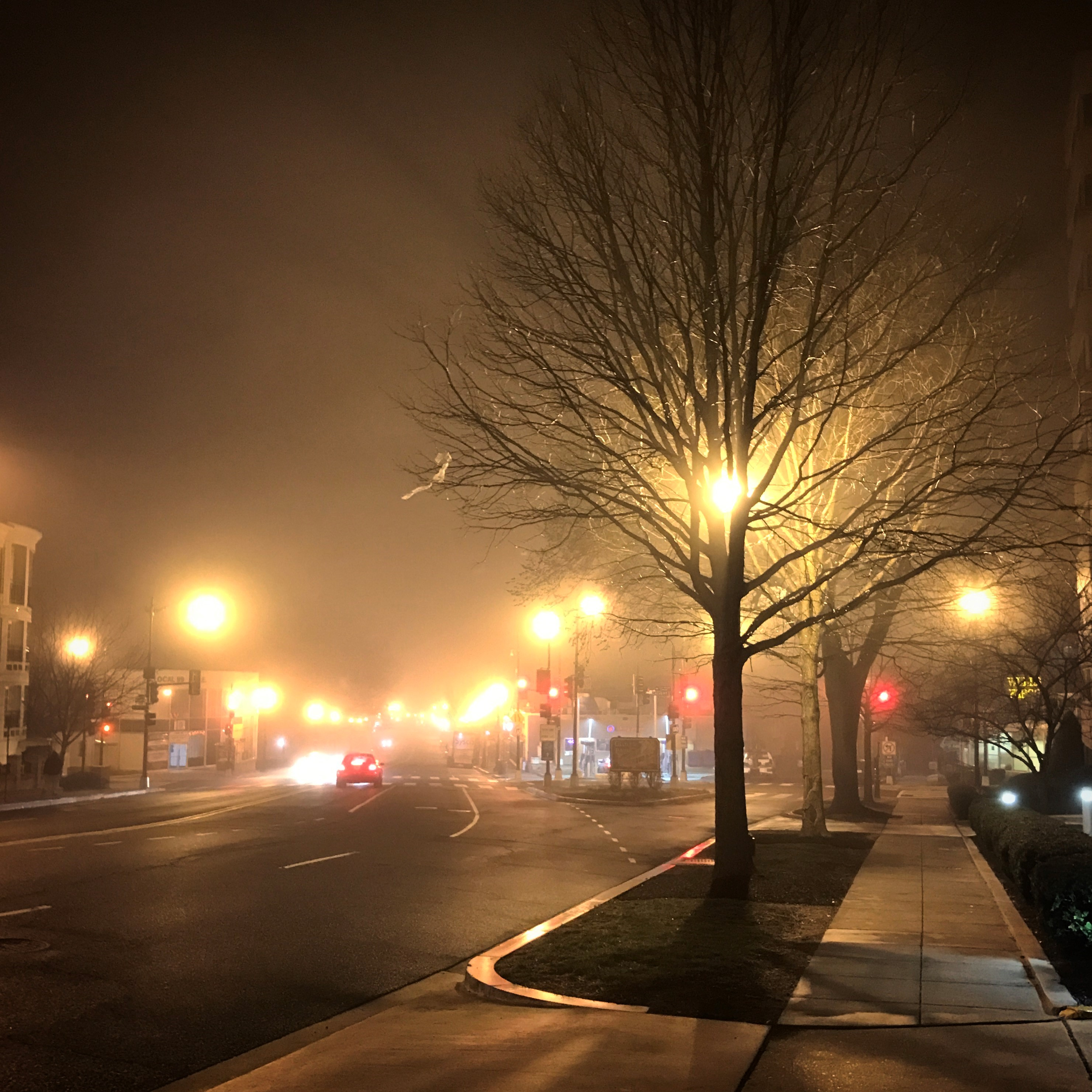 Since Glover Park is pretty close to the waterfront, fog sometimes rolls in at night.. (@11tuan8530)