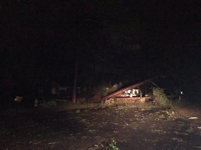 Hundreds of trees are reported to be down across Southwest Georgia. Crews started cleaning and working to restore power as soon as the storm passed east out of the area. / Kerri Copello