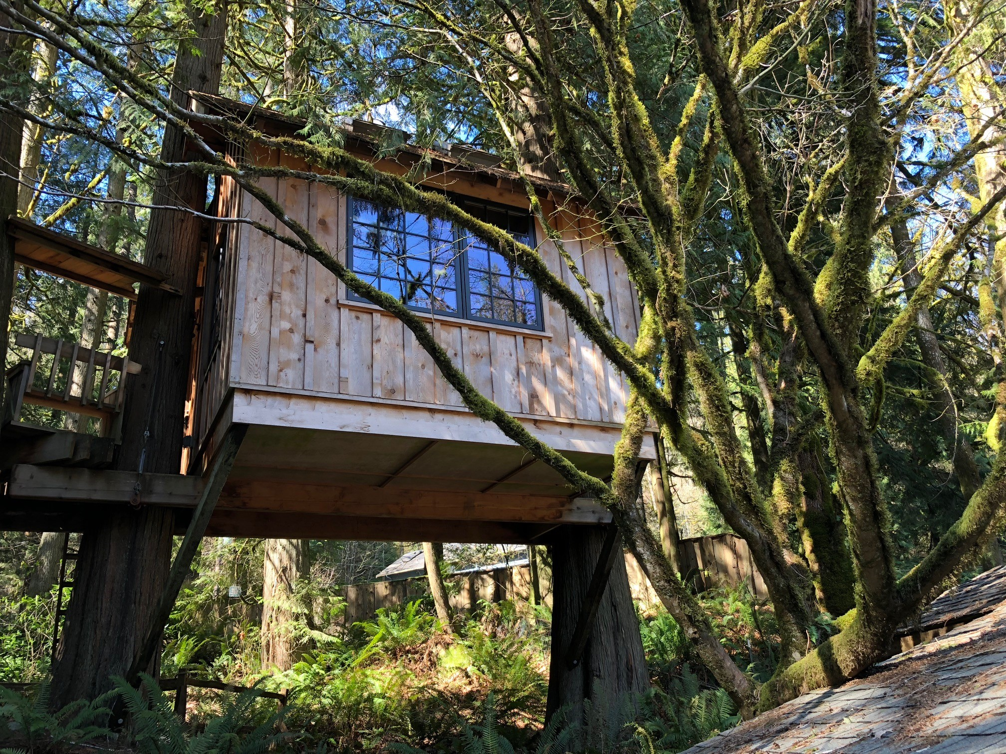 Pete Nelson, Master Treehouse Builder and star of the TV show Treehouse Masters has created special spots for people among the trees at Treehouse Point, 25 miles east of Seattle. (Photo Credit Seattle Refined)<p></p>