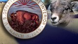 Wildlife officials to release bighorn sheep in southern Utah
