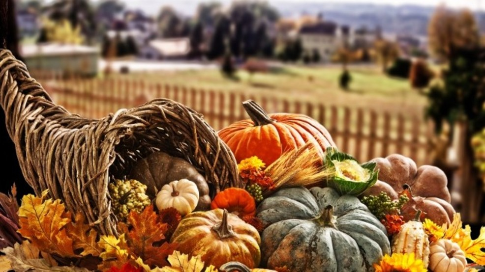 Thanksgiving this gourd's for you BLANK.jpg