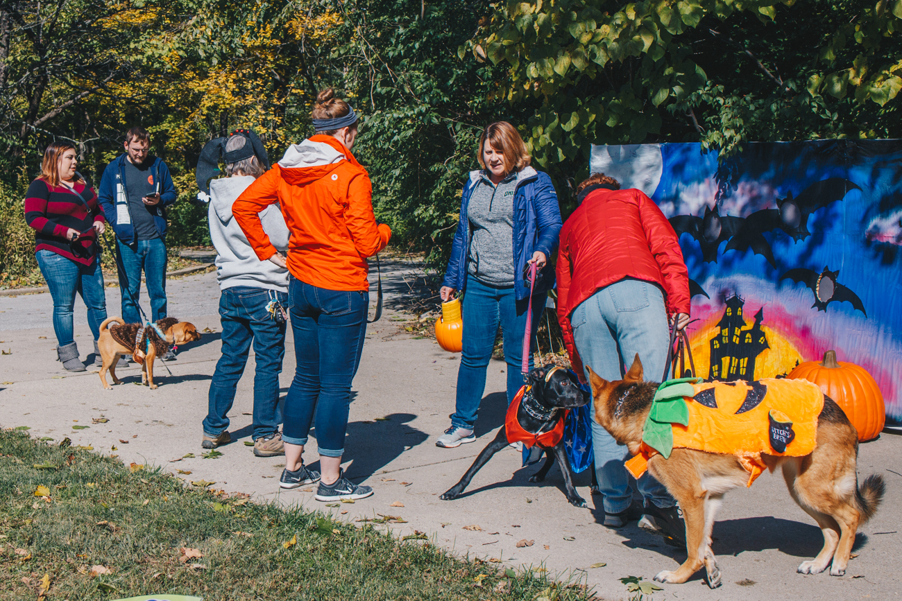 "Howl-o-Ween in the Woods was held at the Caldwell Nature Preserve on Sunday, October 21. Dogs dressed in costumes and walked along pumpkin-lined forest trails featuring over 100 jack-o-lanterns. Local vendors provided treats and free samples of their dog-related goods during the hike. Afterward, dogs were invited to participate in ""paws-on"" activities as well as a Halloween costume contest. / Image: Catherine Viox // Published: 10.22.18"