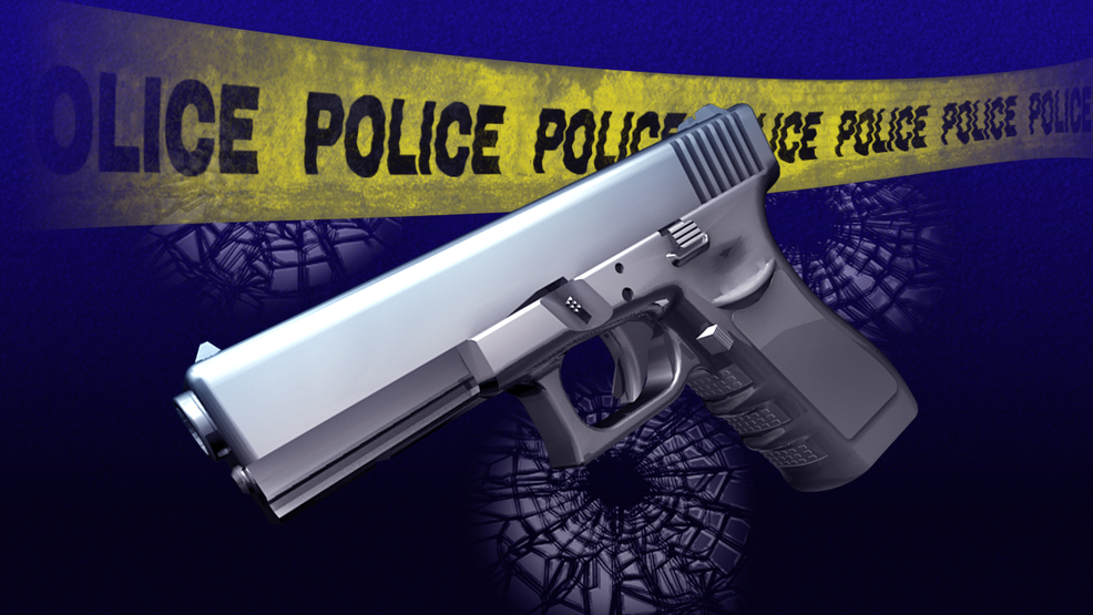 apd looking for witnesses from this mornings shots fired incident