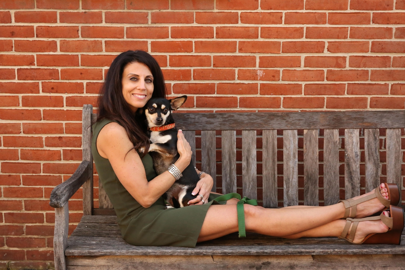 Red is a 3-year-old Chihuahua mix and he is available for adoption at the Humane Rescue Alliance's Oglethorpe location.                      Adriana Falco| Arlington, Va.| Marketing Director  (Amanda Andrade-Rhoades/DC Refined)