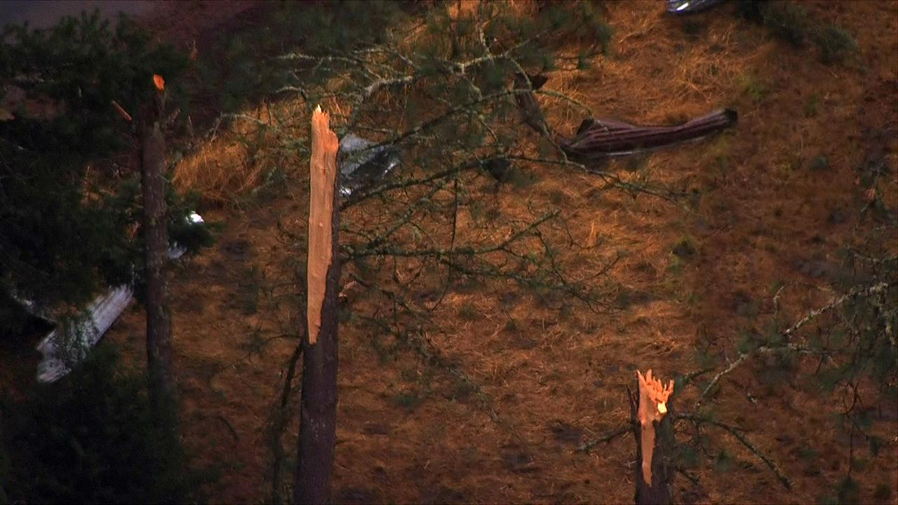 Trees stand damage in Lacomb, Oregon after a possible tornado ripped through the area Tuesday afternoon, Sept. 19, 2017. (Photo: Chopper 2/KATU News)