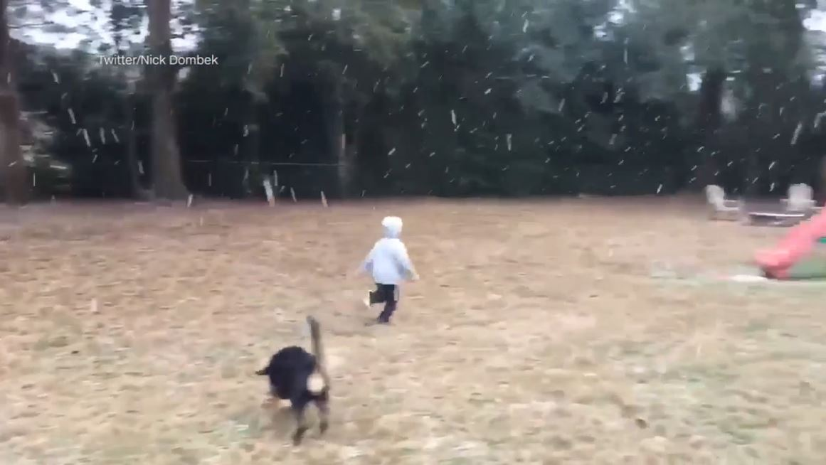 A boy in Tallahassee, FL playing in the snow for the first time (Courtesy Nick Dombek / Twitter)