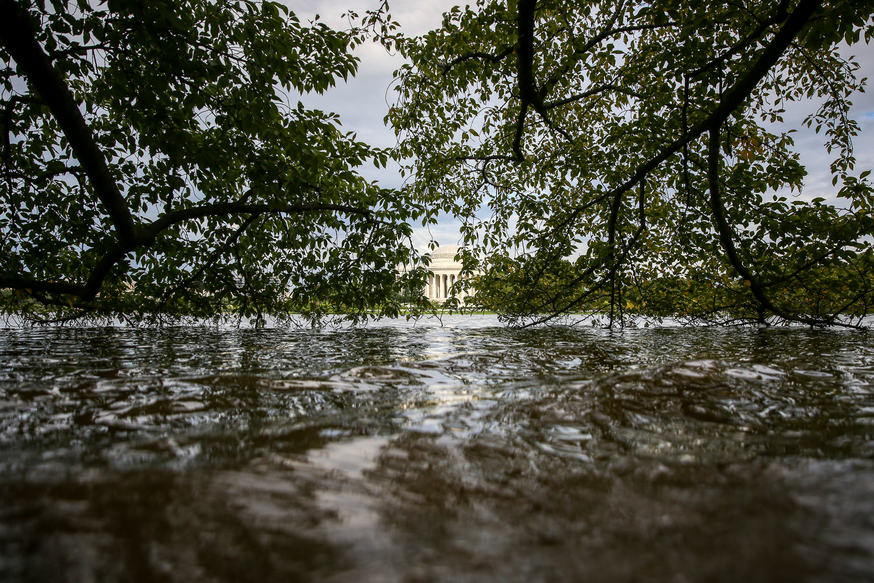 Hurricane Florence slammed into The Carolinas, meaning D.C. missed the worst of its effects. However, the torrential rain has had a profound effect on D.C.'s waterfront areas. From the Tidal Basin to Hains point, here's what the onslaught of rain looks like in The District. (Amanda Andrade-Rhoades)