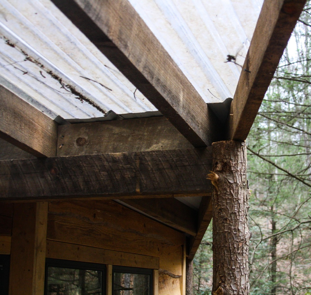 the secret to happiness is living in a tree house cincinnati refined
