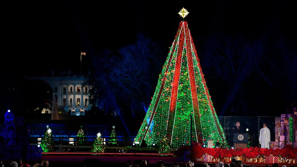 - Trumps Light National Christmas Tree South Of White House WSYX