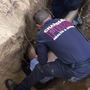 Firefighters help rescue dog from tunnel dug by tortoise