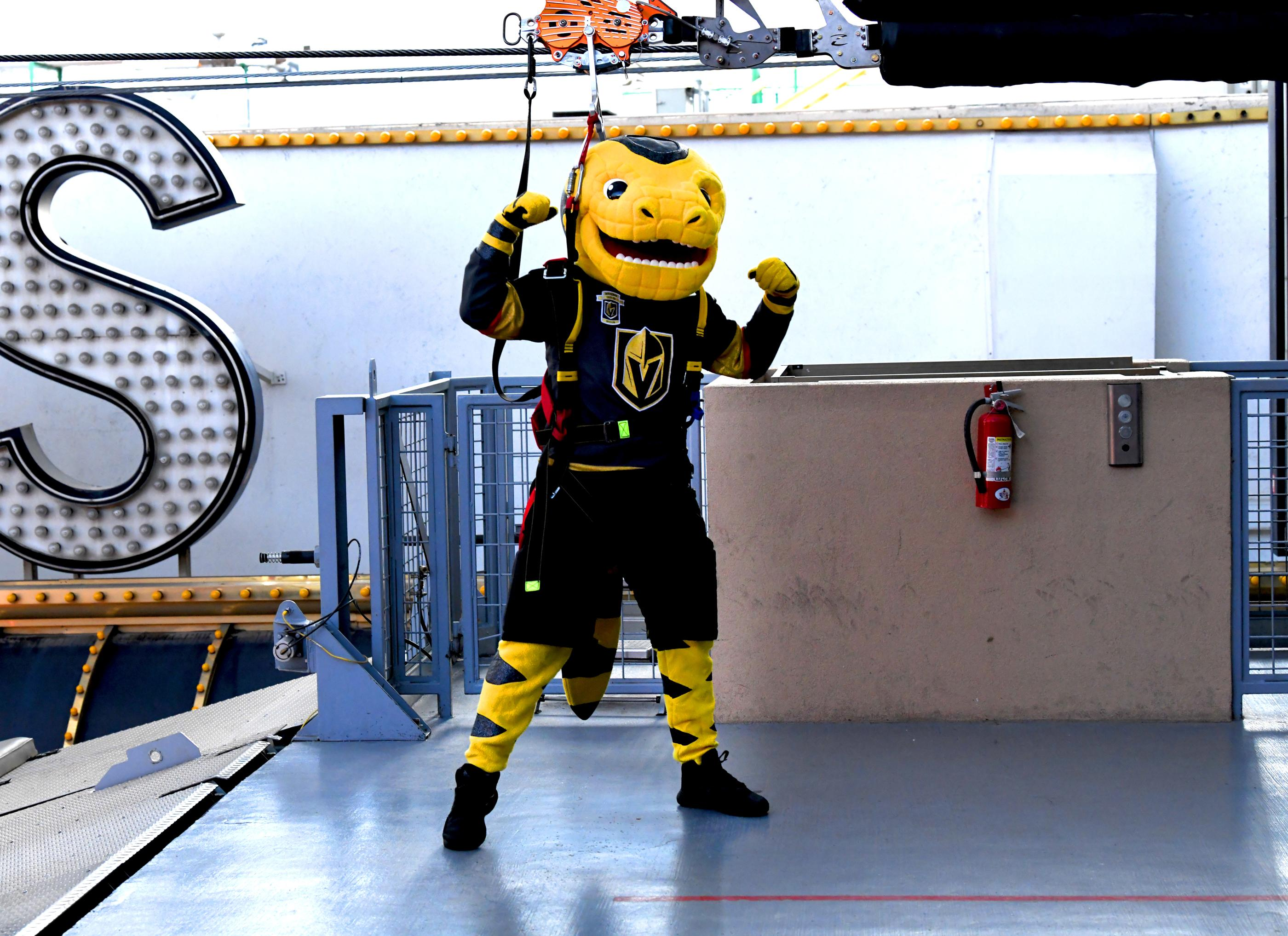 The Golden Knights host a Fan Fest with the D Las Vegas and Fremont Street Experience. In this photo Chance the Gila Monster mascot of the Las Vegas Golden Knights professional hockey team arrives at the Fan Fest via the Slotzilla zip line at Fremont Street Experience. Sunday, January 14, 2017. CREDIT: Glenn Pinkerton/Las Vegas News Bureau