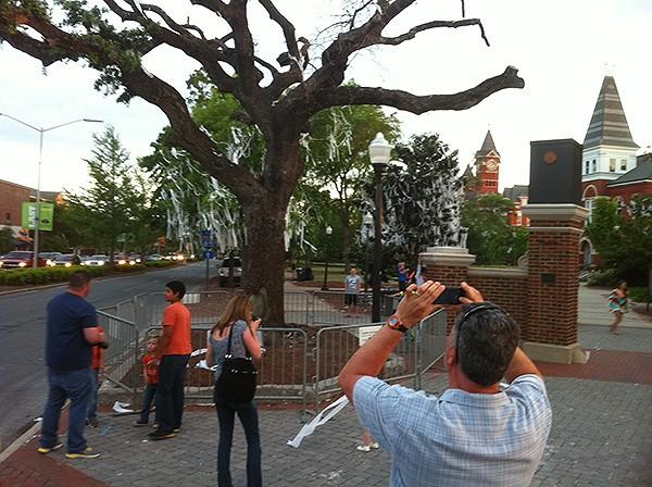 Fans say good-bye to oaks before they are removed