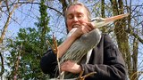 Kayakers distract injured blue heron so Raptor Center staff can net bird along Willamette