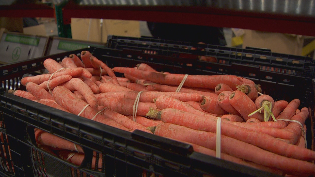 Carrots awaiting home delivery at the Imperfect Produce warehouse in Clackamas. (KATU)<p></p>