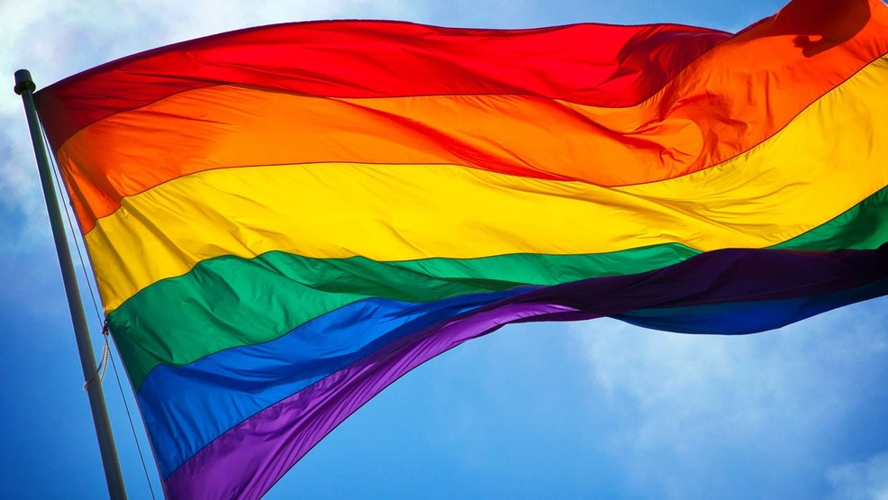 Image result for pride flags
