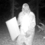Tennessee Legislature candidate releases video of campaign sign thief dressed as Bigfoot