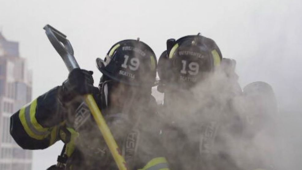Grey's Anatomy spin-off focuses on the Seattle Fire ...