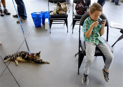 Tara, a 7-year-old cat, keeps a watchful eye over Jeremy Triantafilo, after the cat was presented with the 33rd Annual National Hero Dog Award in Los Angeles. In May of last year, Tara fought off a dog that attacked her 6-year-old owner, Jeremy, as he rode his bicycle in the driveway of his Bakersfield home.
