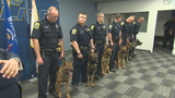 Green Bay police welcome 5 new K-9s