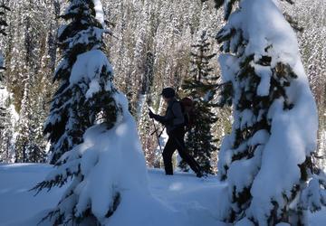 Crater Lake Closure Frustrates Winter Visitors Ashland
