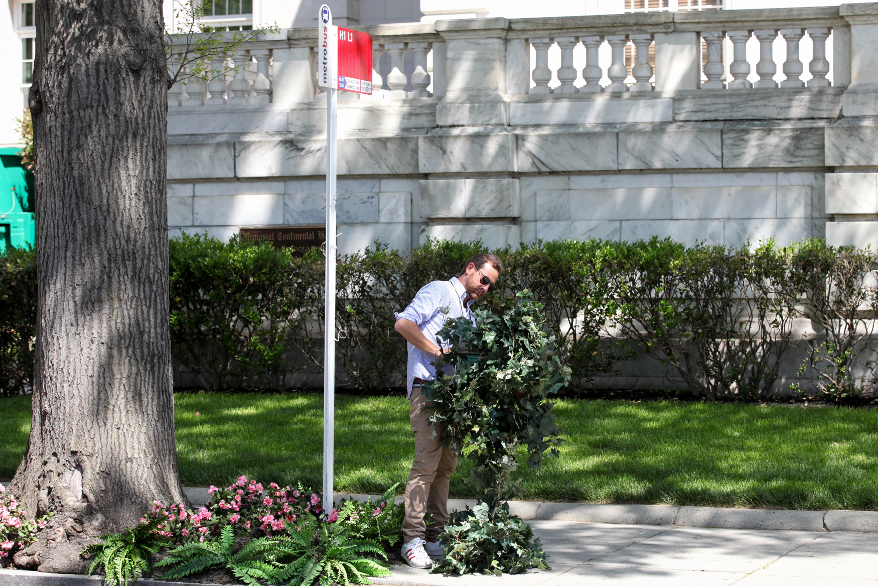 Adjusting some fake plants to conceal a parking meter outside of DAR Hall. (Photo by DC Refined)