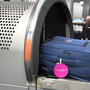 WATCH: What happens to your luggage behind the scenes at Charleston International Airport