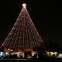 AE tweets daily facts and history of the Zilker Holiday Tree