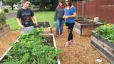 Briggs Middle School students are growing garden space