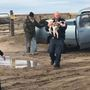 Dog survives 15 days in desert outside Boise after rollover crash